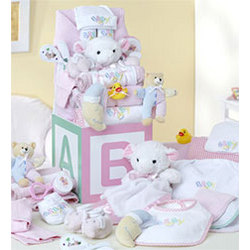 B-is-for-Baby Girl Deluxe Gift Block