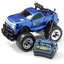Rally Stomper Radio Controlled Truck