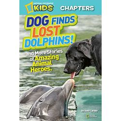 Dog Finds Lost Dolphins! Book