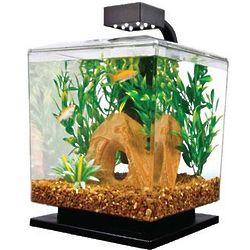 1.5 Gallon LED Desktop Aquarium Kit