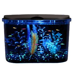 5 Gallon Panaview LED Aquarium Kit