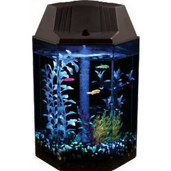 1.8 Gallon Hex-Shaped LED Aquarium Kit