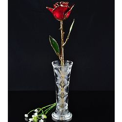 24K Gold Trimmed Burgundy Rose with Crystal Vase
