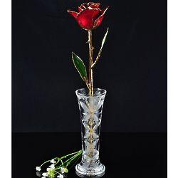 24K Gold Trimmed Burgundy Rose with Crystal Vase