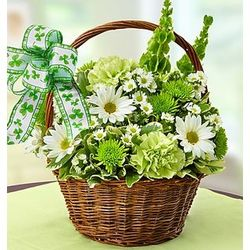 St. Patrick's Day Fresh Flower Basket