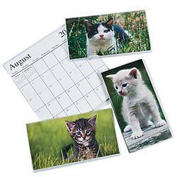 2014-2015 Kitties Pocket Planners