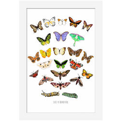 Beautiful Life Caterpillar and Butterfly Art Print