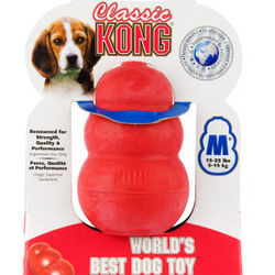 Classic Kong Dog Toy for Average Chewers