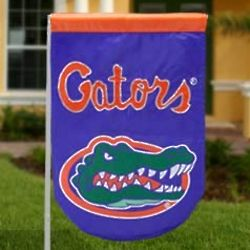 Florida Gators Mini Applique Flag