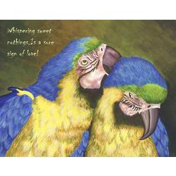 Love Birds V Fine Art Print