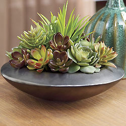 Artificial Succulent Garden in Saucer Shaped Pot