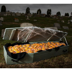 Life Sized Coffin of 1,313 Halloween Cookies