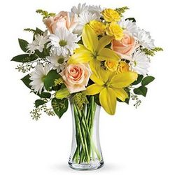 Daisies and Sunbeams Flower Bouquet