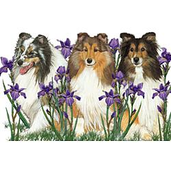 Sheltie and Irises Towel and Pot Holder Set
