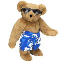 Surf's Up Teddy Bear