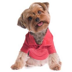Red Button Up Dog Polo Shirt