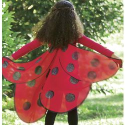 Fabric Ladybug Wings