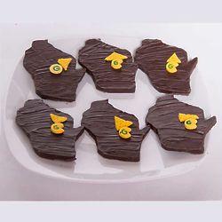 Green Bay Packers Wisconsin Chocolate Treats