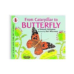 From Caterpillar to Butterfly Book