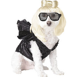 Lady Dogga Pet Costume