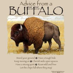 Advice From a Buffalo T-Shirt