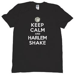 Keep Calm and Harlem Shake T-Shirt