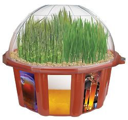 Beer Garden Grow Kit