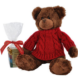 Plush Holiday Cocoa Bear with Squares Chocolates