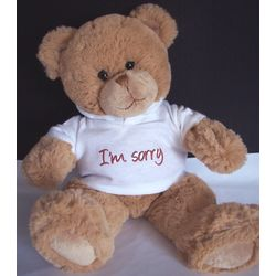I'm Sorry Teddy Bear with Hoodie