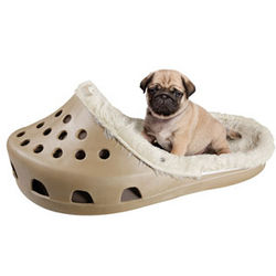 Big Shoe Pet Bed