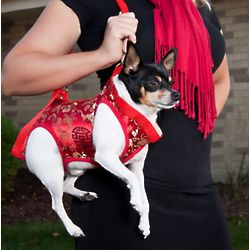 Dog Harness with Carrying Strap in Red