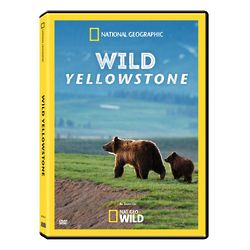 Wild Yellowstone DVD