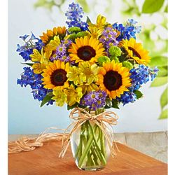 Large Fields of Europe for Summer Bouquet