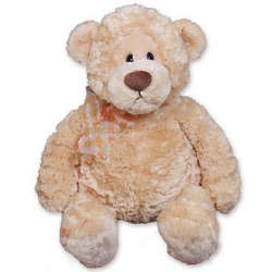 "Personalized16"" Manni Teddy Bear"