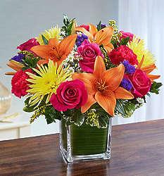 Healing Tears Multicolor Bright Large Bouquet