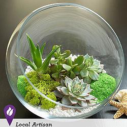 Home Sweet Desert Terrarium