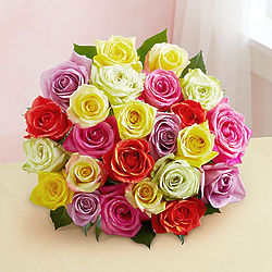 2 Dozen Assorted Roses Bouquet