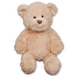 Cuddles Teddy Bear