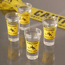 Party Zone Shot Glasses