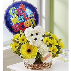 Sick As a Dog Bouquet with Get Well Balloon