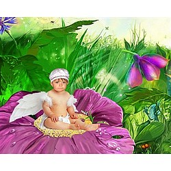 Personalized Violet Fairy Photo