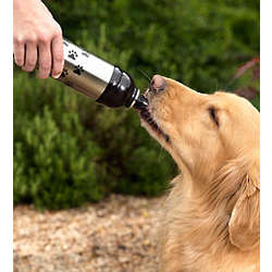 Dog Water Bottle And Snack Container