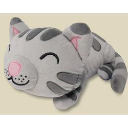 Big Bang Theory Soft Kitty Plush Toy