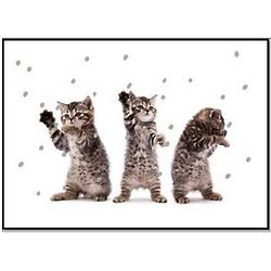Kitten Cheer Christmas Cards