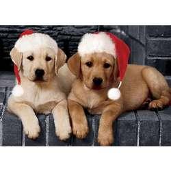 Labrador Retriever Puppies Christmas Cards