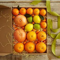 Winter Citrus Gift Box with Personalized Ribbon