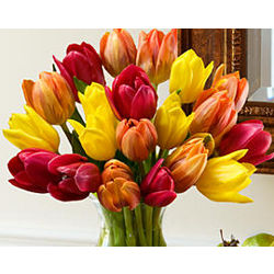 20 Autumn Tulips Bouquet