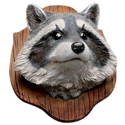 Raccoon Trophy