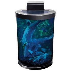 Round Pillar 6 Gallon Desktop Aquarium Kit