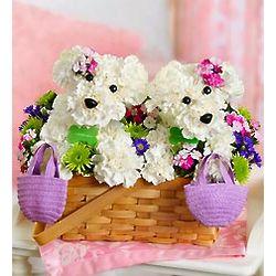 Furever Friends Bouquet